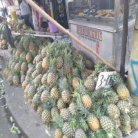 Pineapple as another effective source of activated carbon for the removal of pesticide in water